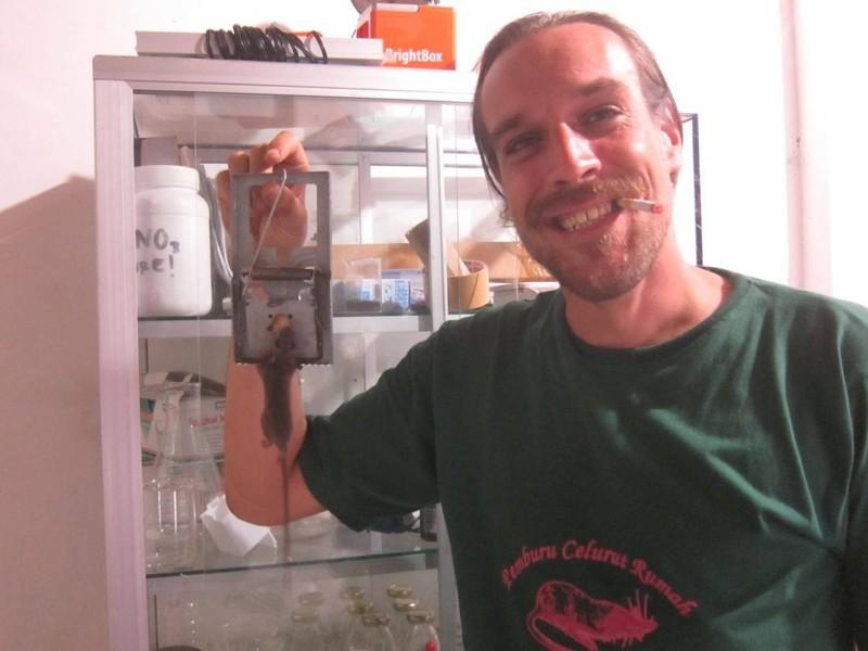 Medium dusjagr tikus yogya2014